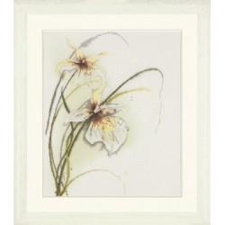 """Lanarte: Siuvinėjimo rinkinys """"Orchidėja"""" PN/0008014 (50x60 cm)"""