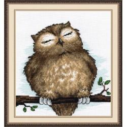 Owl Dream S729