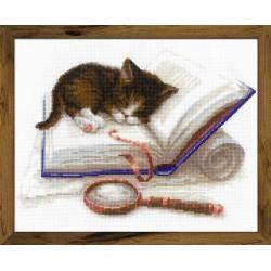 Kitten on the Book siuvinėjimo rinkinys iš RIOLIS Nr.: 1725