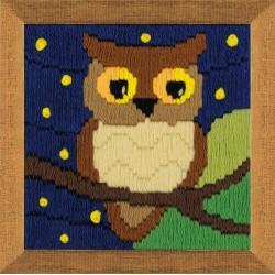 Owl Among The Stars siuvinėjimo rinkinys iš RIOLIS Nr.: 1715