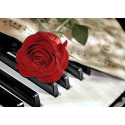Deimantinis paveikslas Rose Music WD053 38*27 cm