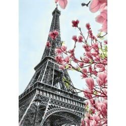 Deimantinis paveikslas Paris WD128 20*30 cm