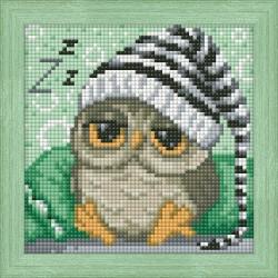 Deimantinis paveikslas Dreaming Owl AZ-1572 15_15cm
