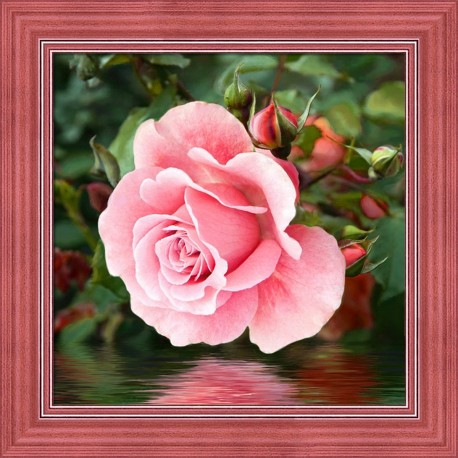 Deimantinis paveikslas Rose by the Water AZ-1704 25x25cm