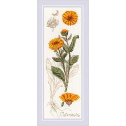 Calendula siuvinėjimo rinkinys iš RIOLIS Nr.: 1798