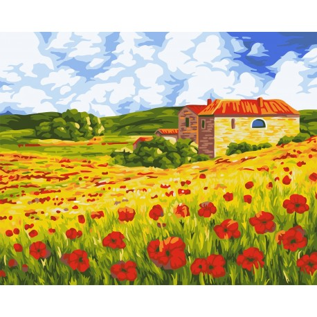 Wizardi Painting by Numbers Kit Poppy Meadow 40x50 cm A091