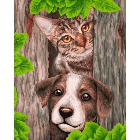 Wizardi Painting by Numbers Kit Two Friends 40x50 cm H114