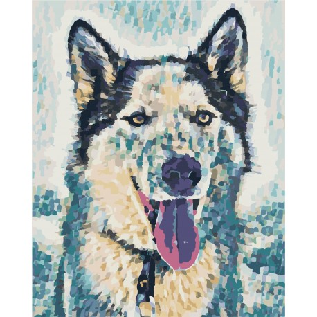 Wizardi Painting by Numbers Kit Best Friend 40x50 cm T40500304