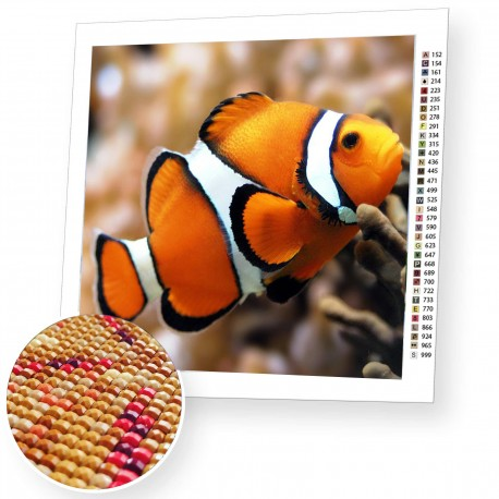 Diamond painting Cloun Fish AZ-1061 Size: 20х18