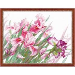 """RIOLIS - Premium - Siuvinėjimo rinkinys """"Irisai"""" 100/024 (45x35 cm)"""