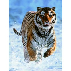 "Ravensburger dėlionė ""Puzzle 500 Tiger in Winter"""