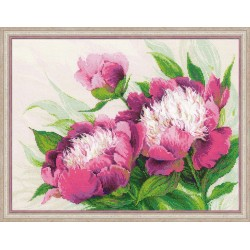 Pink Peonies - Cross Stitch Kit from RIOLIS Ref. no.:100/039