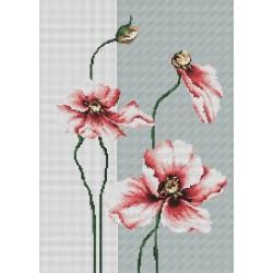 Poppies SB2239