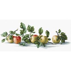 Apples SB2265