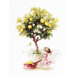 Lemons SB1111