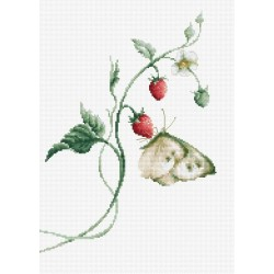 RARE find: Aroma of Summer SB2268 - Cross Stitch Kit by Luca-s