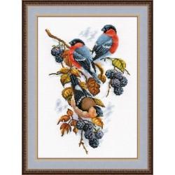 Bullfinches S901