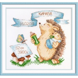 Hedgehog Sampler (boy) S915