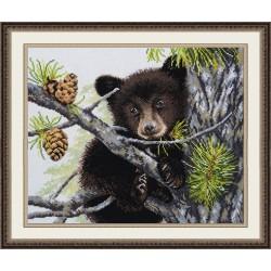 Bear S970