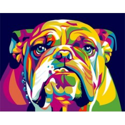 Paint by Numbers Kit English Bulldog T16130016