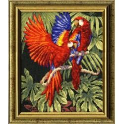 Parrots S/BS004