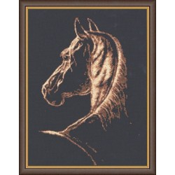 S004 Favorite Cross Stitch Kit from Golden Fleece