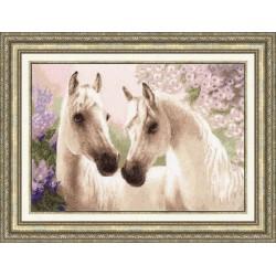 Arab Horses S/Z038