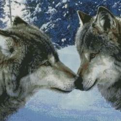 Deimantinis paveikslas Wolf Kiss AZ-1053 Dydis: 50x50