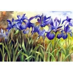 Deimantinis paveikslas Blue Irises AZ-1248 Dydis: 40х28
