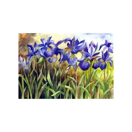 Diamond painting Blue Irises AZ-1248 Size: 40х28