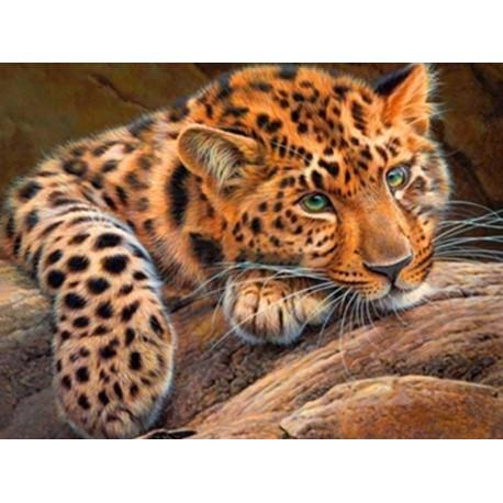 Diamond painting Leopard AZ-1356 Size: 30*40