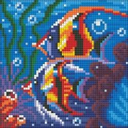 Deimantinis paveikslas Sea Reef AZ-1364 Dydis: 15х15
