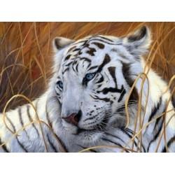 Diamond painting White Tiger AZ-1401 Size: 40х30
