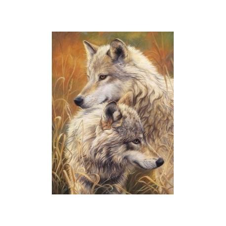 Deimantinis paveikslas Wolf Tendernes AZ-1403 Dydis: 30х40