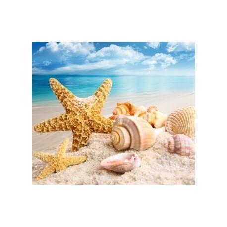 Diamond painting Sea Treasures AZ-1093 Size: 40x35