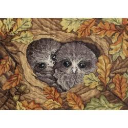 Owls SNV-548 siuvinėjimo rinkinys iš MP Studija