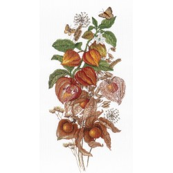 Emerald Berry SNV-614 cross stitch kit by MP Studio