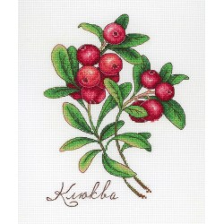 Cranberry SNV-649 cross stitch kit by MP Studio