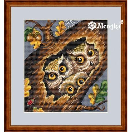 Owls SK32 siuvinėjimo rinkinys iš Merejka